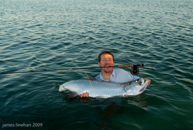 Tarpon season in the island of puerto rico articles for Fly fishing for tarpon