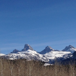 A beautiful view of the Teton range from the Snake River.