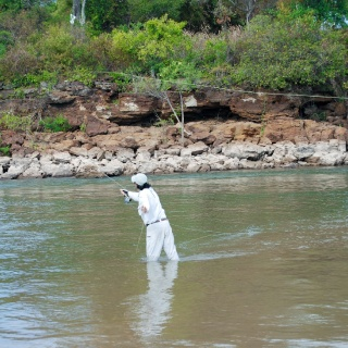Casting on Golden Fly Fishing area! - Golden Fly fishing.