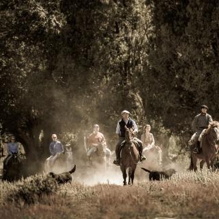 Horseriding - Arroyo Verde Lodge