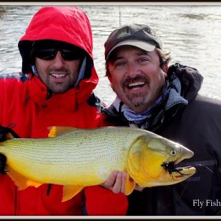 Golden Dorado at the Parana River