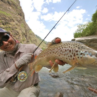 Brown Trout fishing trips in the Himalayas ...