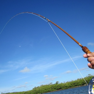What is at the end of this bamboo fly rod?? - Mango Creek Lodge