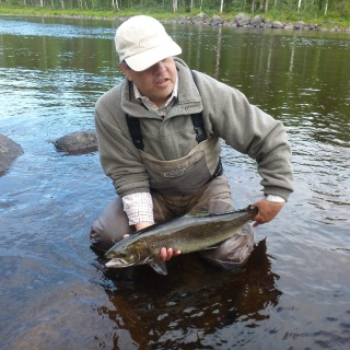 First foreign salmon