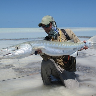 Huge barracuda caught on fly - Seychelles