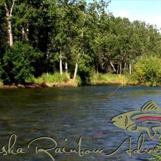 Middle section of American Creek, Alaska