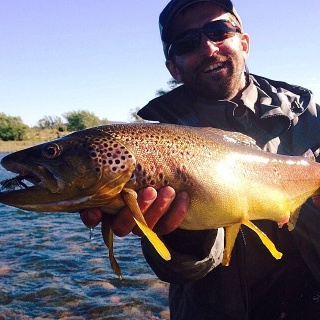 Friend and fisherman Lauren Le Flanchec left Limay River Lodge today. During 6 straight days he averaged 50 fish a day, both rainbows and browns between 20 and 26 inches. All fishing was done with floating lines, mainly dry flies (attractors, parachute pa