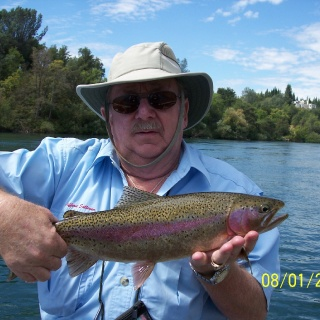 Sacramento River Rainbow Trout