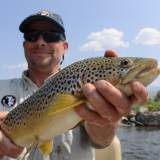 The Jefferson is on of our favorite rivers to find elbow room and great trout fishing!