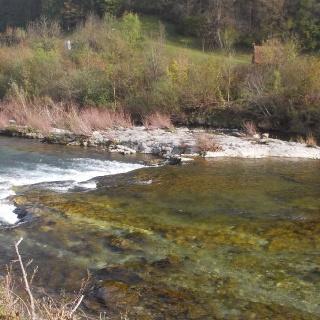 Savinja river
