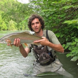 Big rainbow trout from Sava river