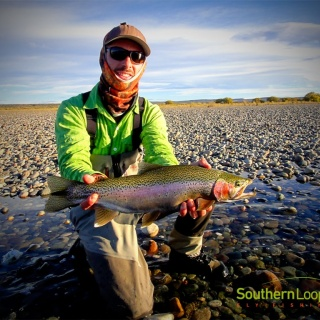 Middle Limay, nice coloured, Rainbow Trout.