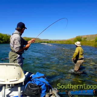 Fish on! - Chimehuin River.