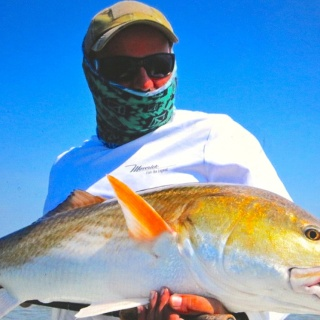 Big redfish on fly