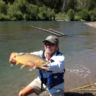 Yellowbelly!  Big Snake River Finespot