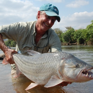 20 Pound Plus Tiger Fish of Tanzania