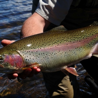 Nice Laguna Larga Lodge  Rainbow