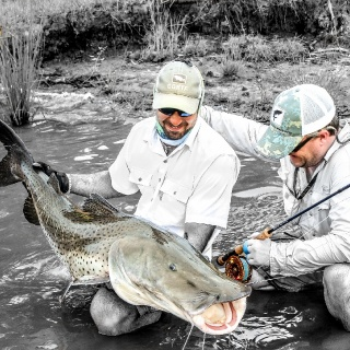 A Golden Fly Fishing experience ! - Argentina