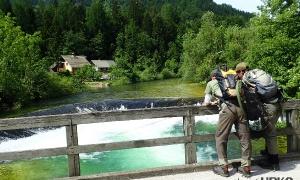 Radovna River, Radovna valley, Gorenjska region, Slovenia