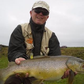 Monster Brown Trout from Skjálftavatn in Litla á.