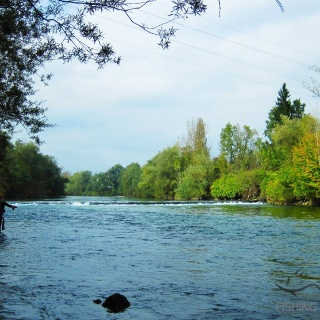 Fly fishing in Slovenia @ Urko Fly fishing in Slovenia @ Urko Fishing Adventures More info: http://urkofishingadventures.com/