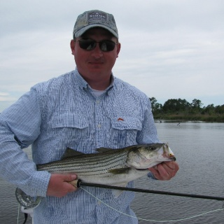 Neuse stripers