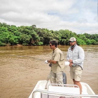 Fly fishing for Golden Dorado at Paso de la Patria