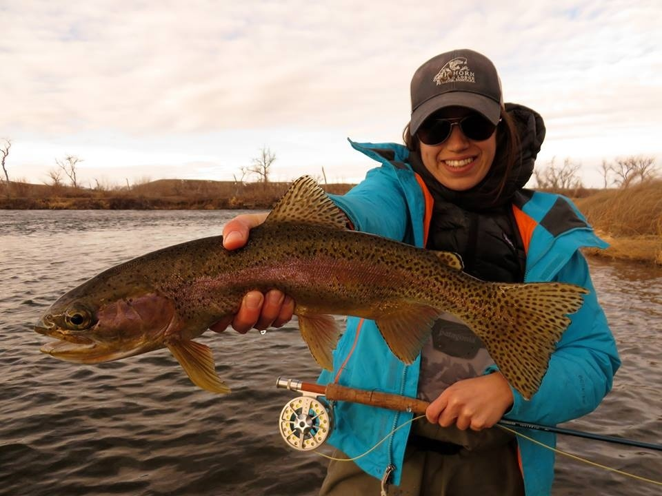 Bighorn river lodge fly fishing lodge fly dreamers for Bighorn river fly fishing