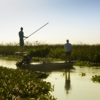 Fly fishing situation - Pira Lodge