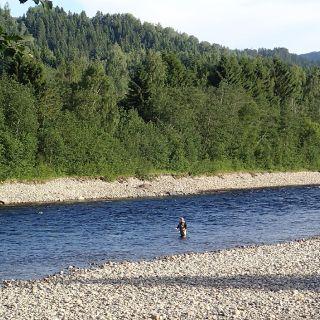 Gaula Flyfishing Lodge Beat 5 - Evjenöra pool is nice fly water
