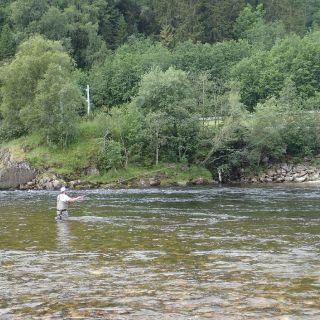 Gaula Flyfishing Lodge Beat 3 - Vollan pool
