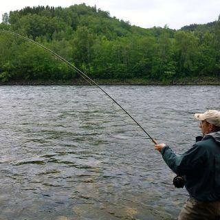 Fish on at beat 3 - Röskaft pool