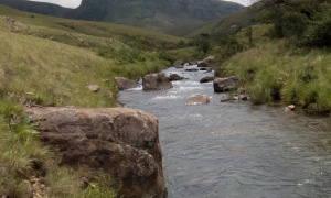 Streams and small lakes, KZN Midlands, South Africa