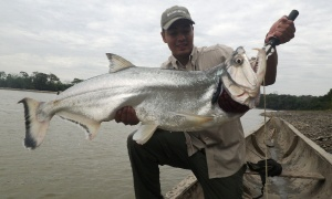 Rio Guayabero, Departamento del Meta, La Macarena, Colombia