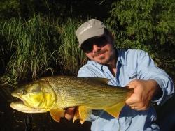 Dorados en el delta del Rio Paraná