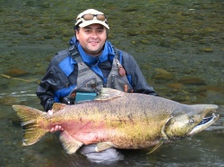 Pescando King Salmon en sur de Chile