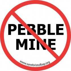 Rio Tinto pulls out of Pebble mine