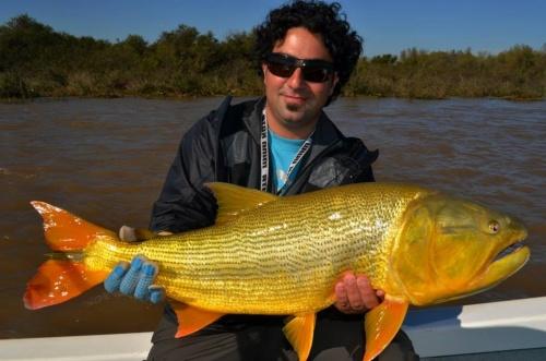 el dorado mas grande que saque en la temporada 2013 en mi Ciudad San Nicolas de los Arroyos