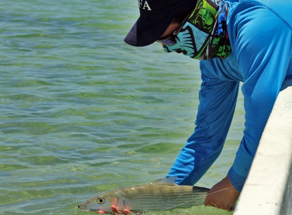 Fly Fishing for bonefish in Cozumel Island, Mexico.
