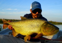 Fly-fishing Photoof Golden <strong>Dorado</strong> shared by Nicolás Schwint – Fly dreamers