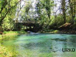 Fly Fishing in Slovenia: Mysterious Bistra and Ljubija (Angling Club Vrhnika)