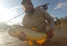 Ramiro Dumas 's Fly-fishing Picof a Golden Dorado– Fly dreamers