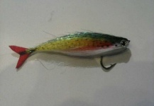 Ariel Najle 's Flyfor Freshwater <strong>dorado</strong> -Picture – Fly dreamers