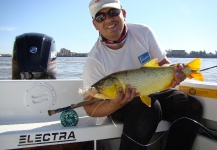 Good Fly-fishing Situation of Golden <strong>Dorado</strong> shared by Pablo Costa Gonta