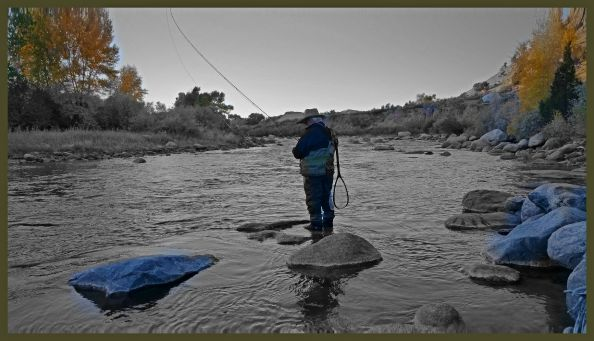 Fishing the Wind River in the Fall.  Mark at Trout Bumming.com