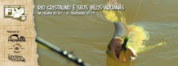 ARUANÃ ON THE FLY!