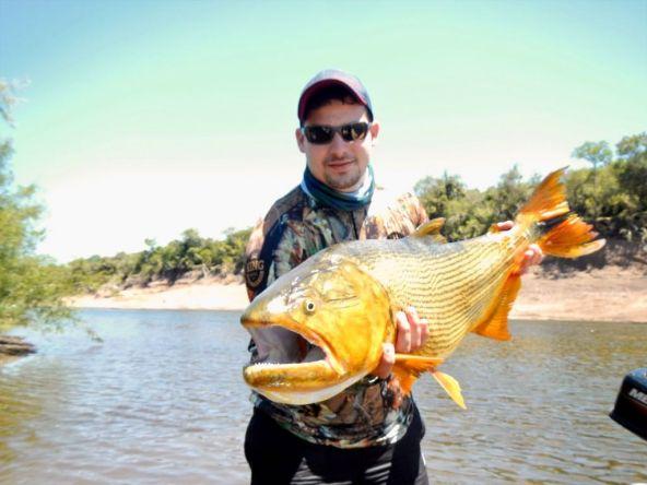 La pieza mayor del finde en el campamento de Arapey Fly Fishing. Con los amigos brasileños.