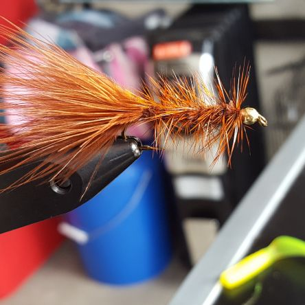 Nice rusty brown wooly bugger tied on a size 8 streamer hook