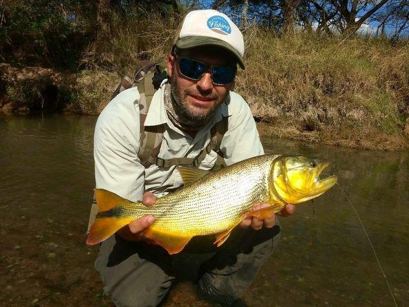 Sigue firme la pesca en los arroyos Bonaerenses. Se dio todas las condiciones un buen clima donde la temperatura del agua el color del agua casi transparente utilizando un stremers de 6 cm .