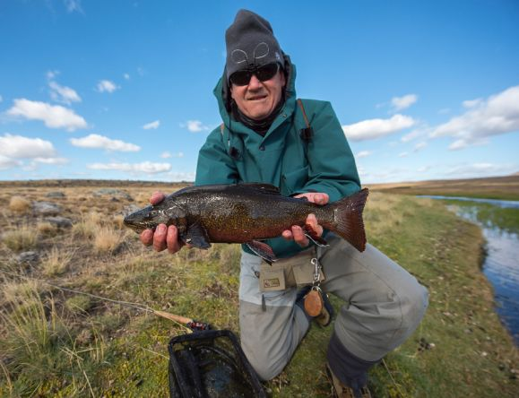Hard to get, a volcanic brookie from the Route of the Spring Creeks